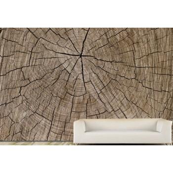 Tree trunk Wood Vinyl Wall Art Wallpaper