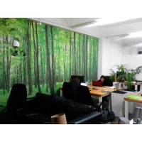 Office Wallpaper Woodsctock